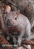 Autumn coloured left facing Gray Squirrel Target Face. Quinet / CC BY 2.0