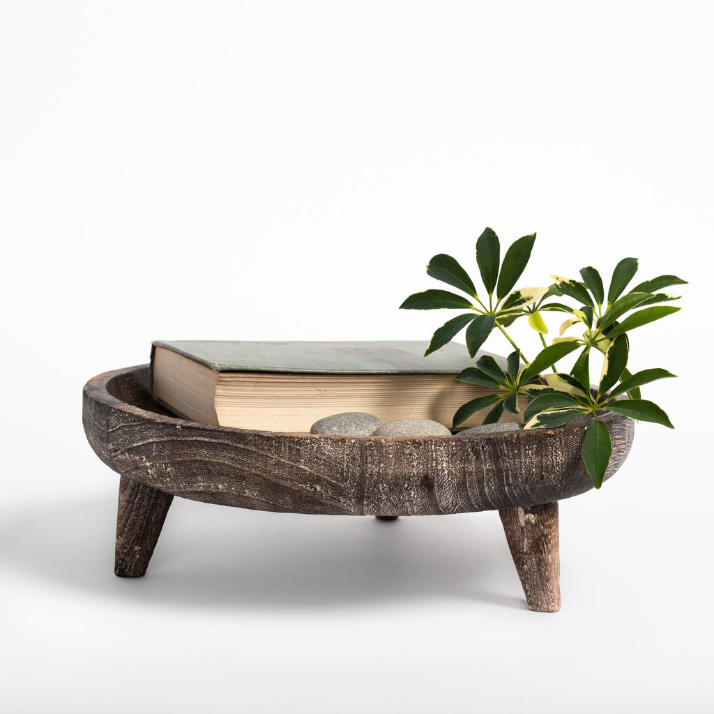 Batam wood footed catchall tray : book, stones and plant cutting in tray