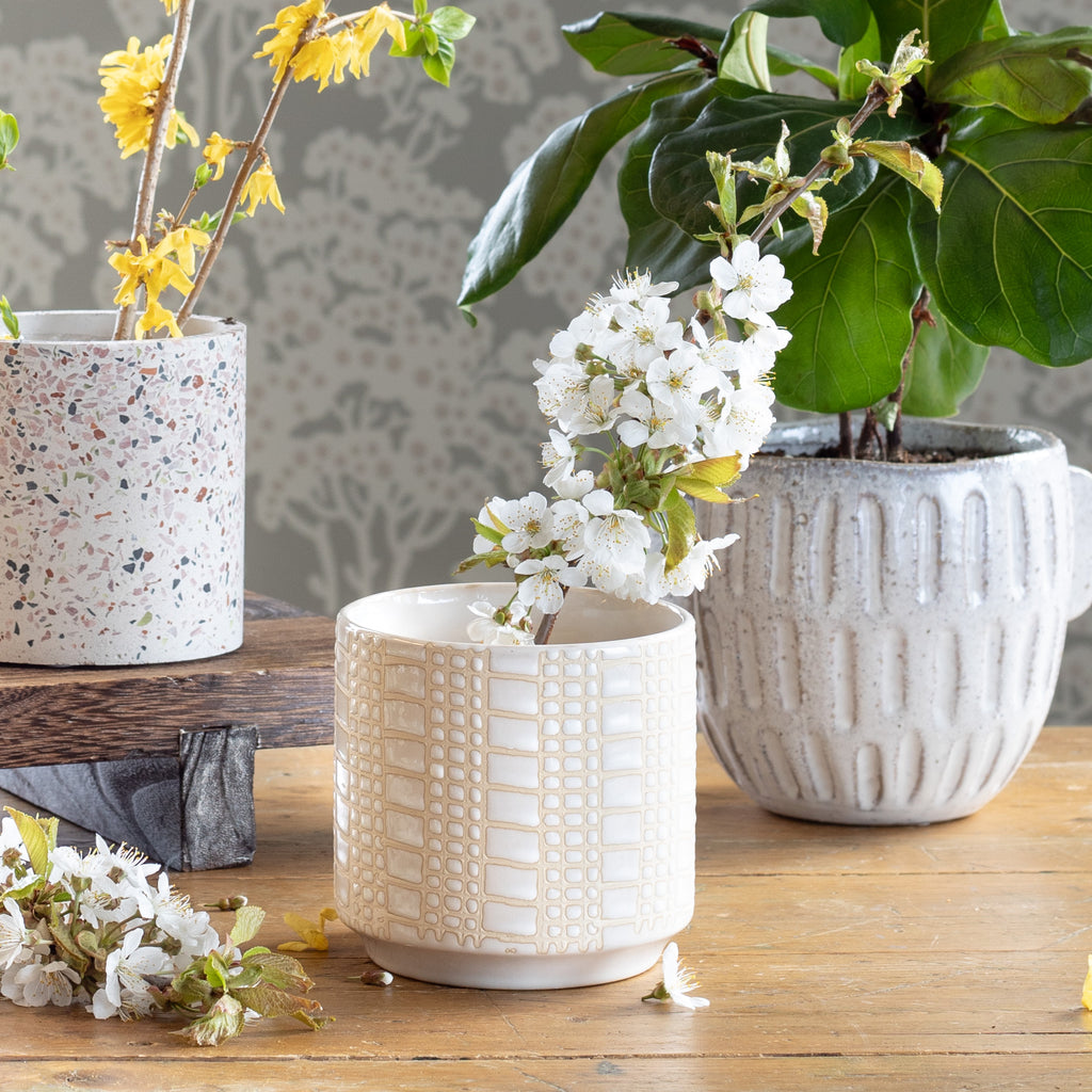 Dotti cream small glazed ceramic plant pot shown with Tessa Terazzo and Terrie plant pots