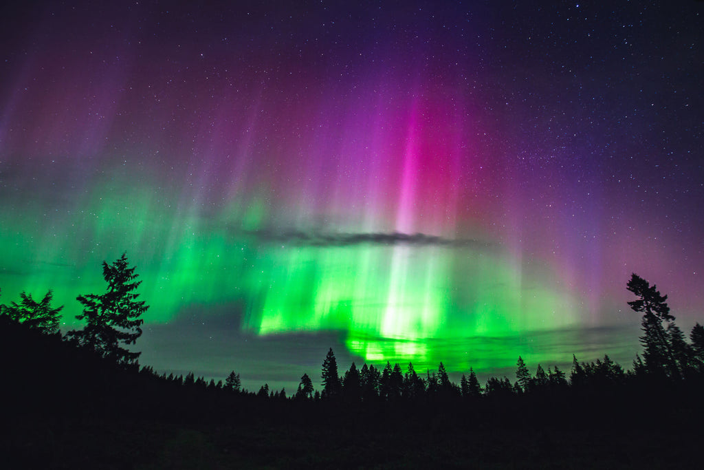 "gosko photo ""Campbell River aurora"""