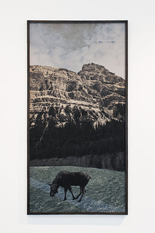 "Derek Dix ""Animalia Canadiana; A.a. Sirasi - Limited Edition 5/5"""