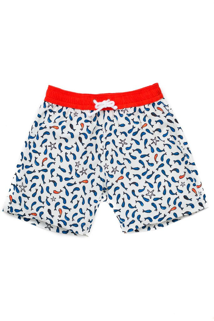 Folpetto - Tommasso - Swim Shorts