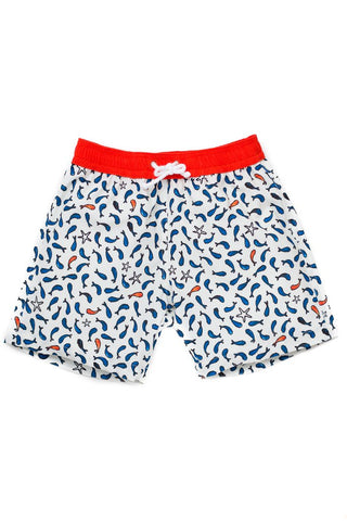 Folpetto - Tommasso -Swim Short - how-i-wonder