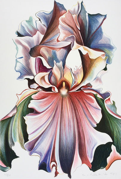 Iris, Limited Edition Lithograph, Lowell Nesbitt - Fine Artwork