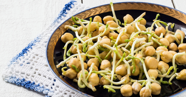 how to sprout chickpeas