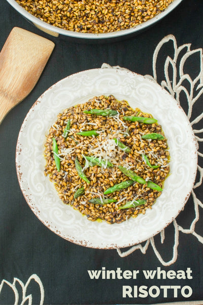 winter wheat berry risotto