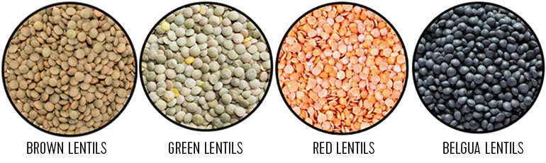 what are lentils green brown lentils