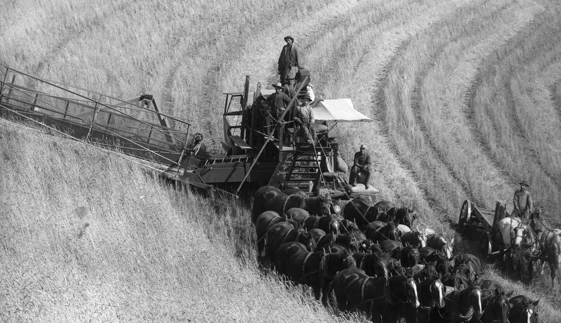 Black and white photo of wheat farming on the Palouse