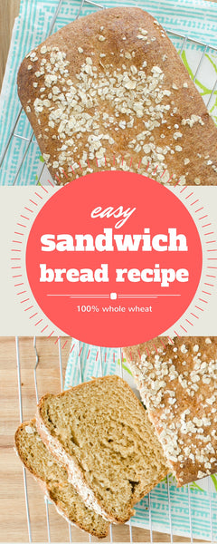 sandwich bread recipes