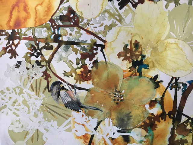 'Conversations from the Garden' | New works by Brenda Malkinson | Opens November 16