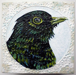 Blackbird - Green
