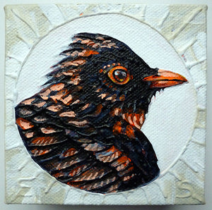 Blackbird - Orange