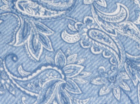 Paisley Dreams Blue