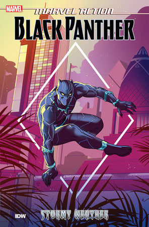 Marvel Action: Black Panther: Stormy Weather - Book One