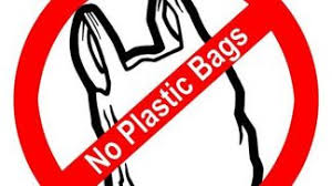 BANS ON SINGLE USE PLASTIC BAGS