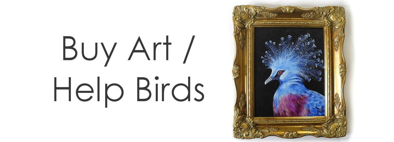 custom bird paintings and pet portraits