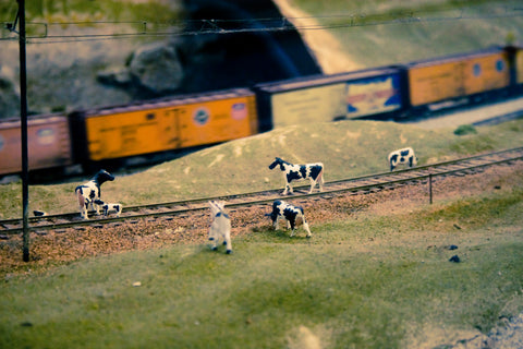 model railroad scene