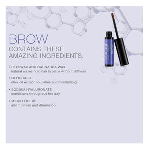 Scalisi Brow Treatment