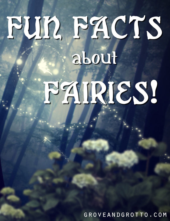Fun facts about fairies!