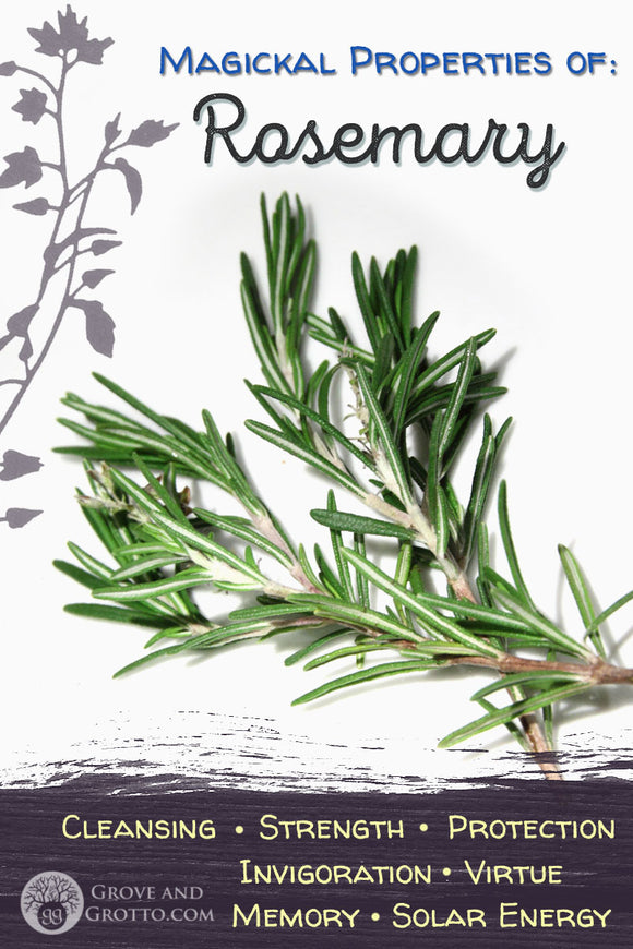 Magickal properties of Rosemary