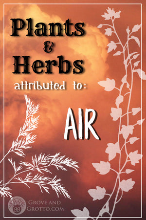 What plants and herbs are attributed to Air?