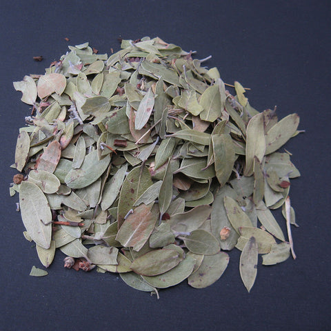 Dried Bearberry leaves
