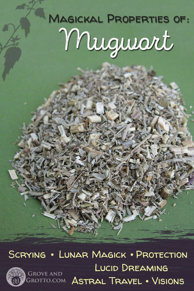 Magickal properties of Mugwort – Grove and Grotto