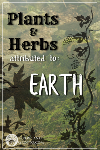 Earth plants and herbs