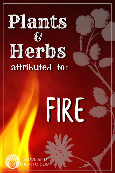 Plants and herbs of Fire