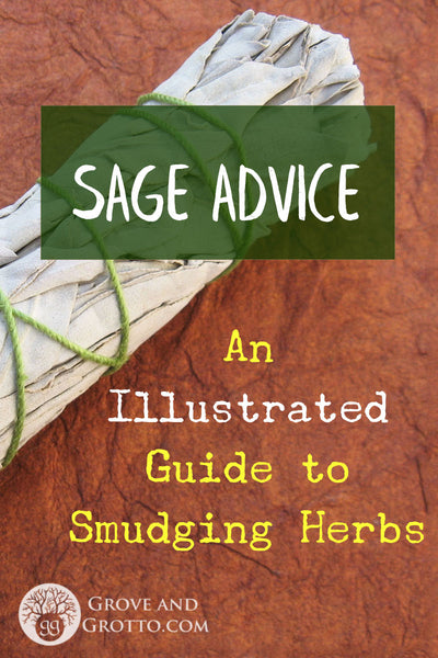 Sage Advice An Illustrated Guide To Smudging Herbs