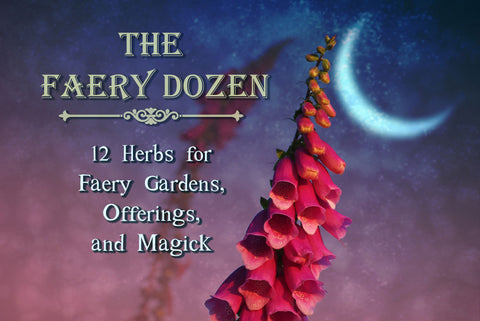The Faery dozen: 12 herbs for Faery gardens, offerings, and