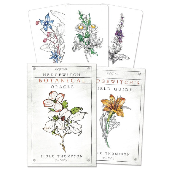 Hedgewitch Botanical Oracle (Boxed Set)