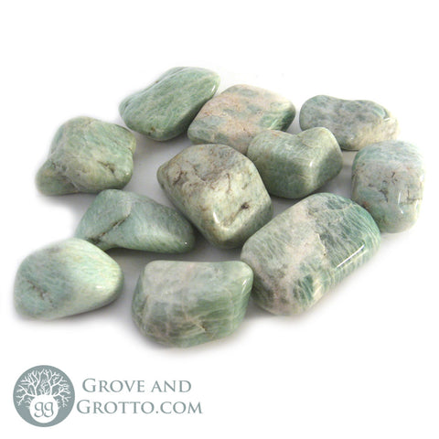 Amazonite Tumbled Large (1/2 lb) - Grove and Grotto