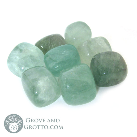 Green Fluorite (1 Piece) - Grove and Grotto