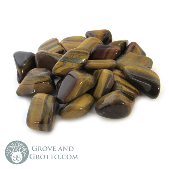 Tiger's Eye (1 Piece) - Grove and Grotto