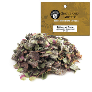 Dittany of Crete (1/6 oz) - Grove and Grotto