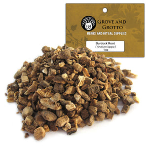 Burdock Root (1 oz) - Grove and Grotto
