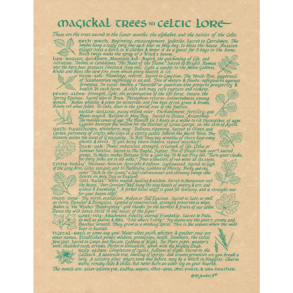 "Celtic Trees Parchment Poster (8.5"" x 11"") - Grove and Grotto"