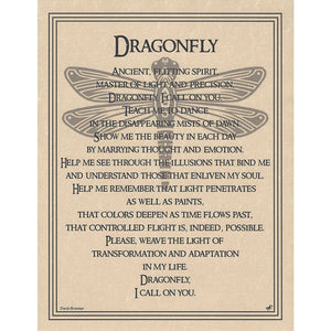 "Dragonfly Prayer Parchment Poster (8.5"" x 11"") - Grove and Grotto"