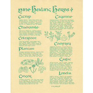 "Nine Healing Herbs Parchment Poster (8.5"" x 11"")"