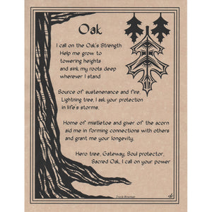 "Oak Prayer Parchment Poster (8.5"" x 11"") - Grove and Grotto"