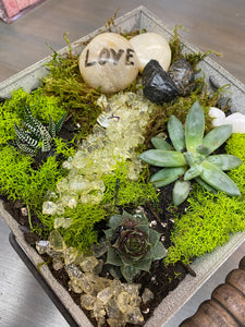 DIY Kit: Indoor Succulent Gardens To Make At Home
