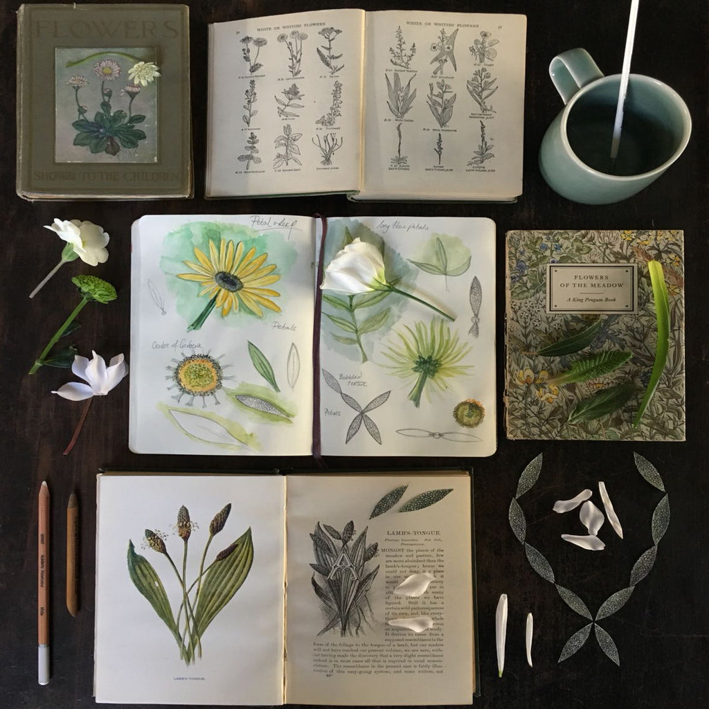 Catherine Hills Jewellery Petal collection sketchbook