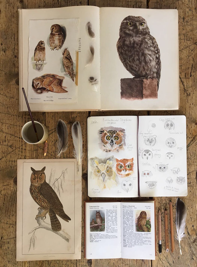 Catherine Hills sketchbook, owl ring
