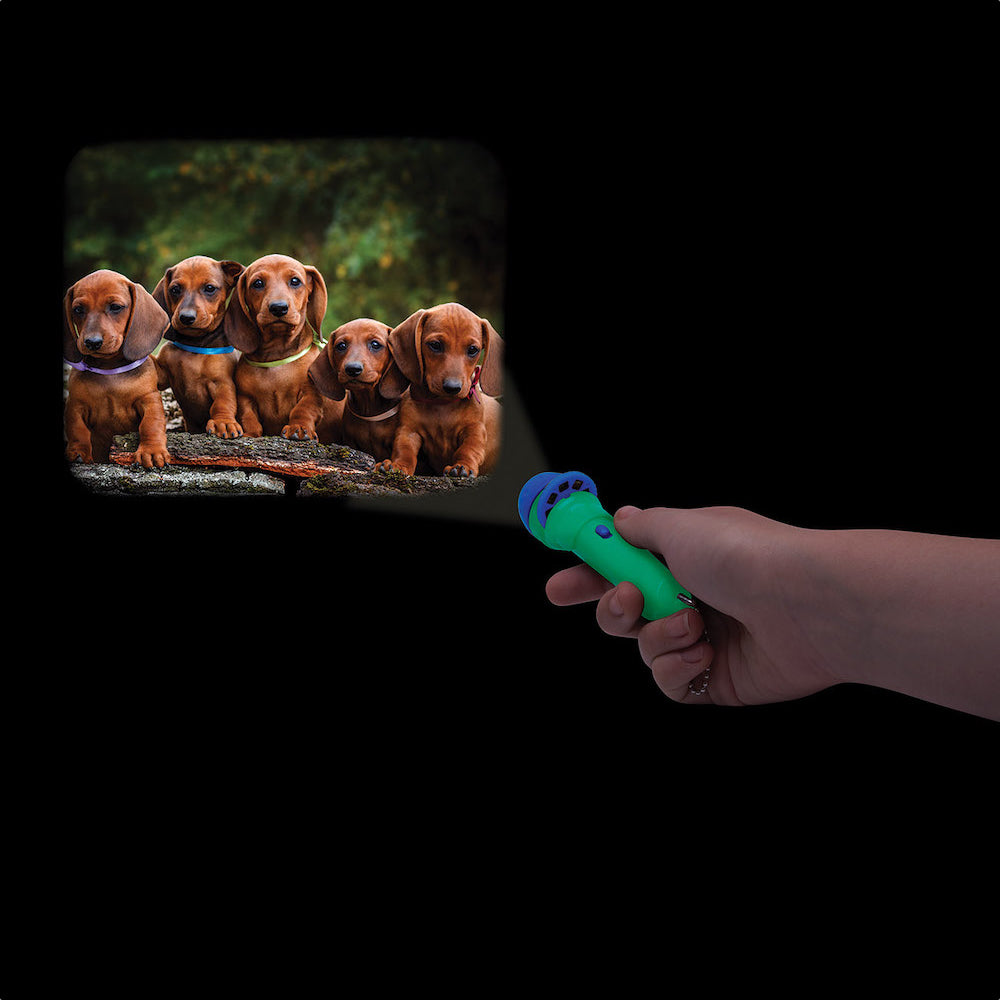 Torch Projector-Dogs