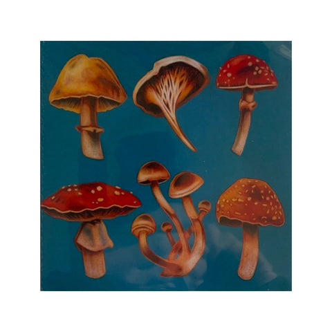Card - Mushrooms