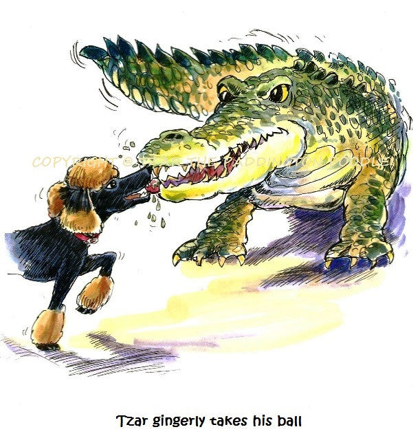 PRINT - from the Crocodile Encounter Collection - Tzar gingerly takes his ball