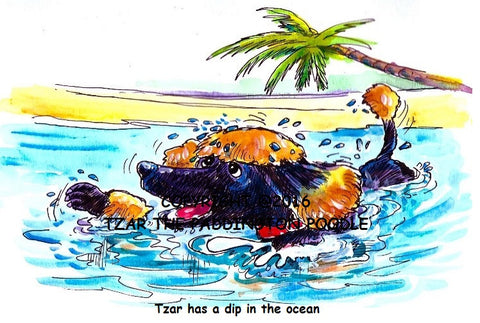 PRINT - from the Crocodile Encounter Collection - Tzar goes for a swim