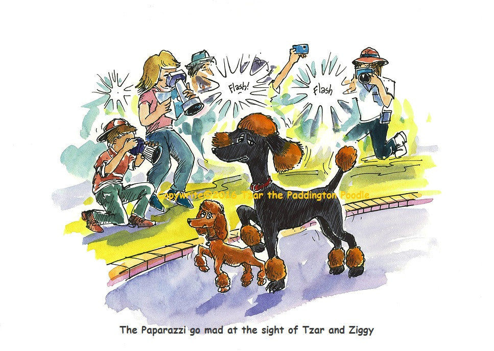 PRINT - from the Goanna Encounter Collection - The paparazzi go mad at the sight of Tzar and Ziggy