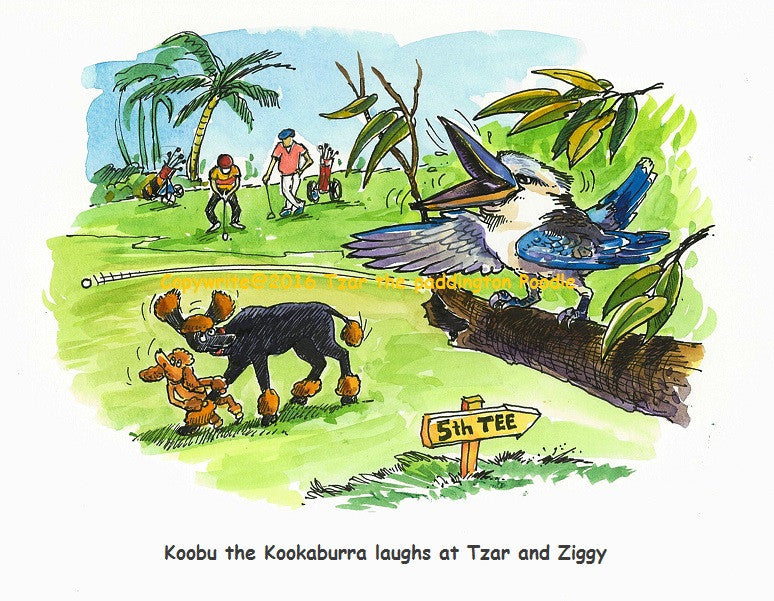 PRINT - from the Goanna Encounter Collection - Koobu the Kookaburra laughs at Tzar and Ziggy